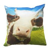 Daisy Cow Cushion Cover