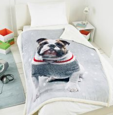 Photographic Blanket Throw - Bulldog