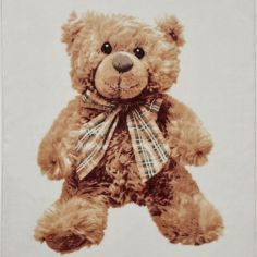 Catherine Lansfield Raschel Fleece Throw - Teddy Bear Panel